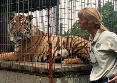 Tanya Smith, founder of the Turpentine Creek Wildlife Refuge, with a rescued tiger, Eureka Springs, July 1998.