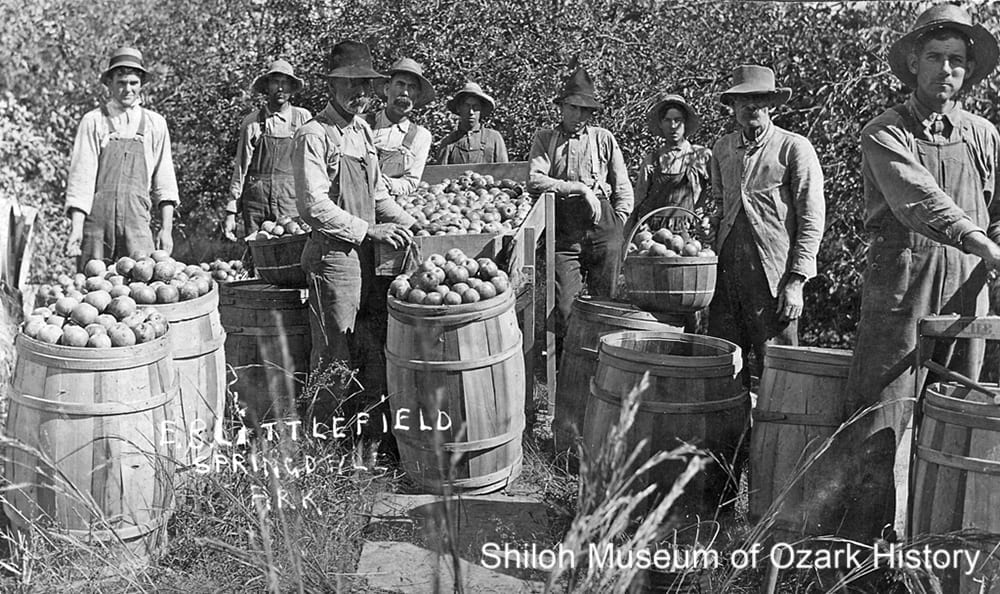 E. B. Littlefield orchard east of Springdale, circa 1910.