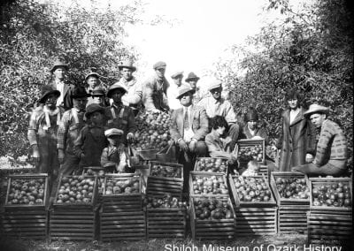 Jeff Gover (center) in his orchard, north of Springdale, 1920s.