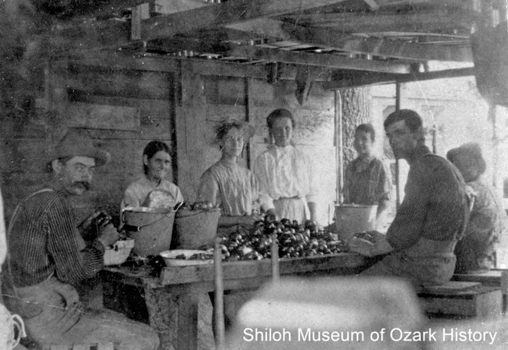Anglin family working at Rupple's apple shed, Fayetteville, circa 1910.