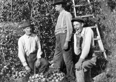 Benjamin F. Johnson (center) in his orchard, south of Fayetteville, 1910s