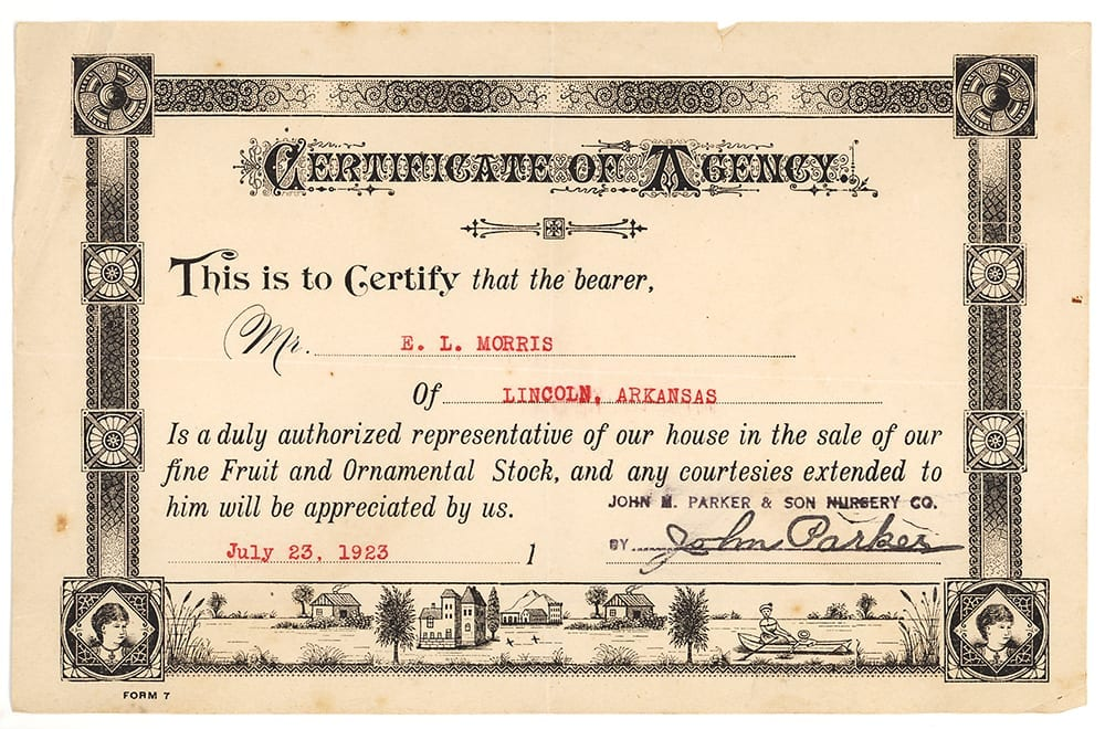 Certificate authorizing E. L. Morris of Lincoln, Arkansas, as a sales representative for Parker Brothers Nursery.