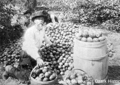 Luke L. Kantz kneeling with his apples, Fayetteville, 1900s.