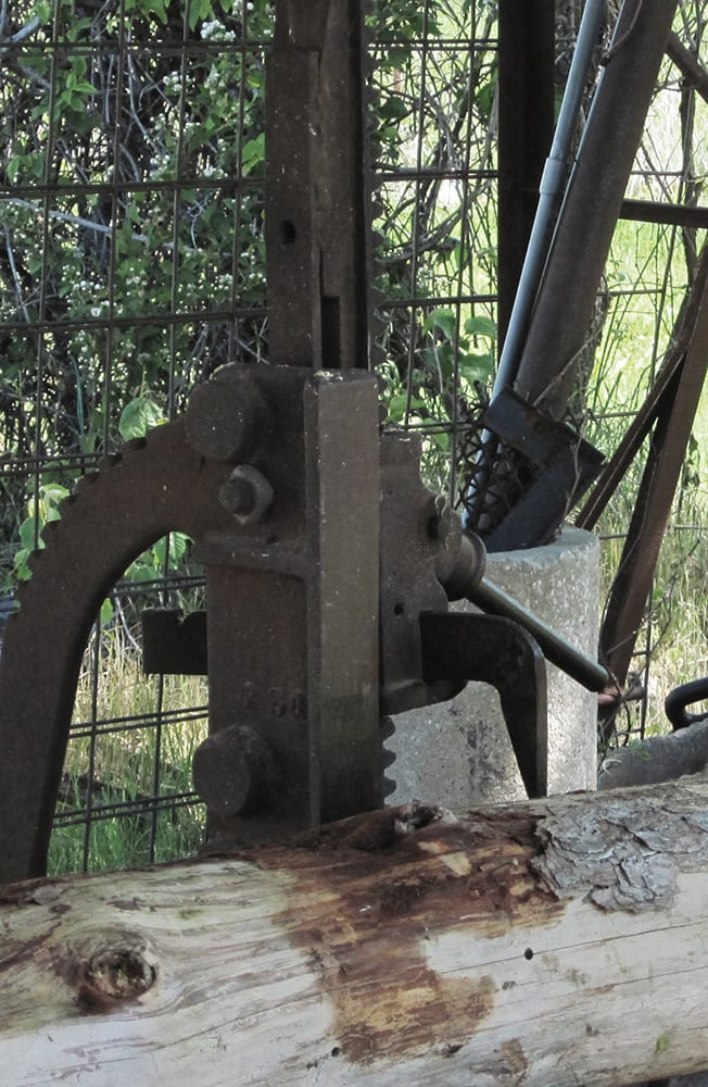 Sawmill dogs