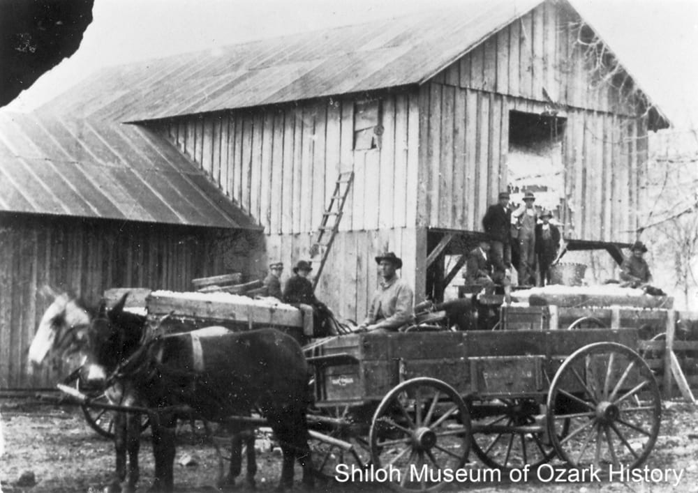 Cotton gin, Everton, Boone County, Arkansas,circa 1900.