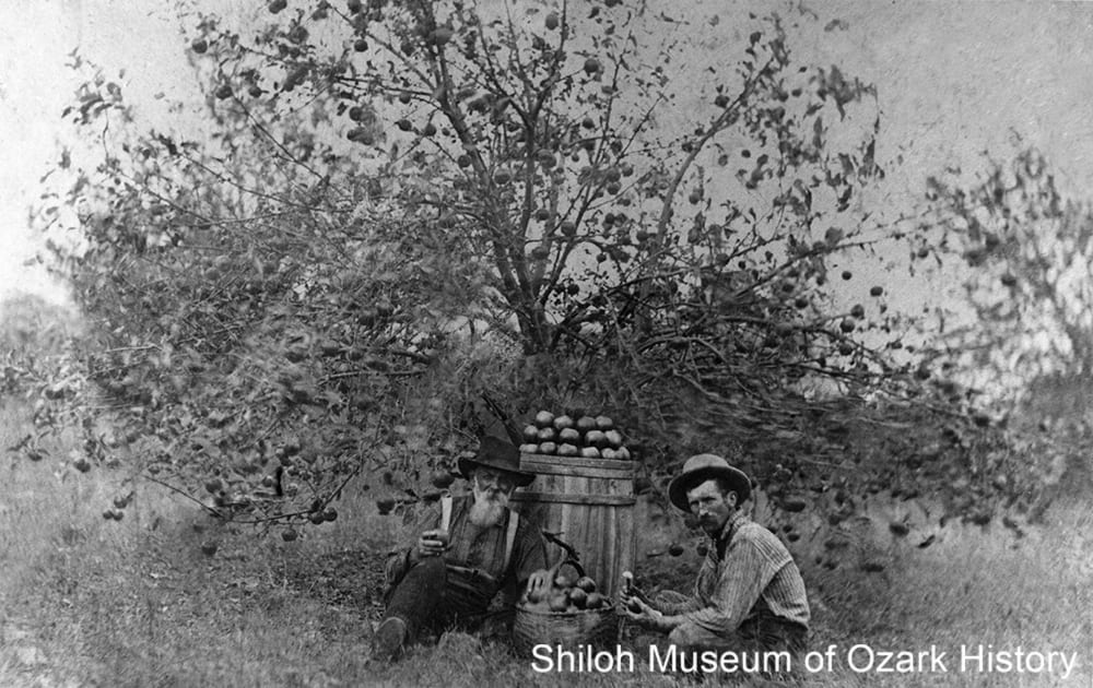 Garrett Williams (left) in his apple orchard with son-in-law Robert Bedford Wilson, Buckeye community (near Whitener), Madison County, Arkansas,1900s-1910s.