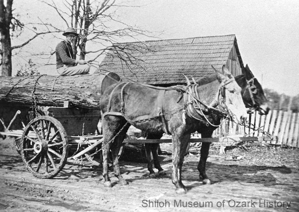 Jim Tate driving a log wagon, William Armer's place, Osage Township, Newton County, Arkansas, 1910s-1920s.