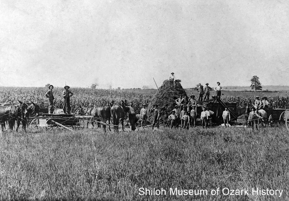 Workers possibly threshing oats, with a cornfield in the background, Western Grove, Newton County, Arkansas,1910s.