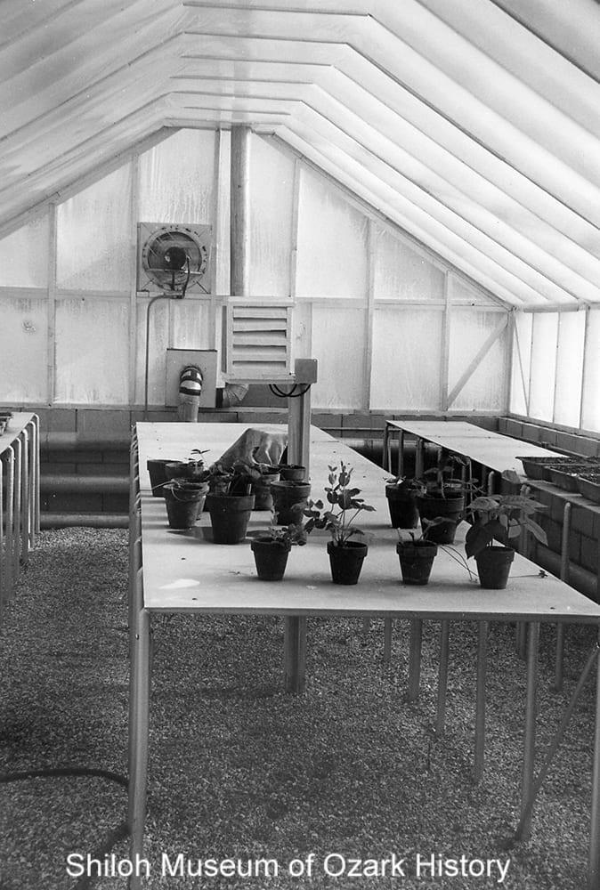 Greenhouse, University of Arkansas, Fayetteville, 1956