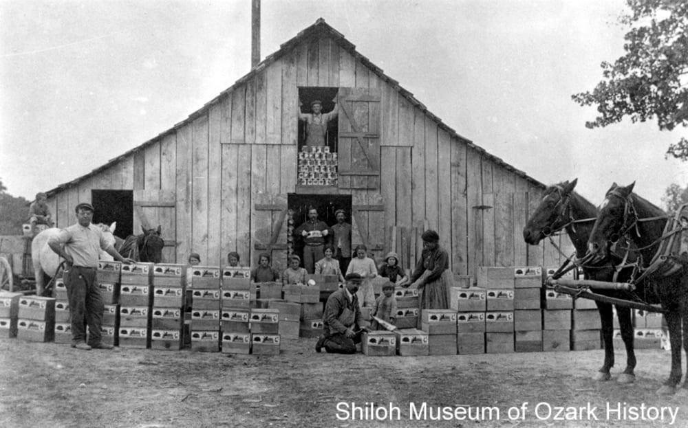 Morsani Canning Company, Tontitown, Arkansas, 1910s.