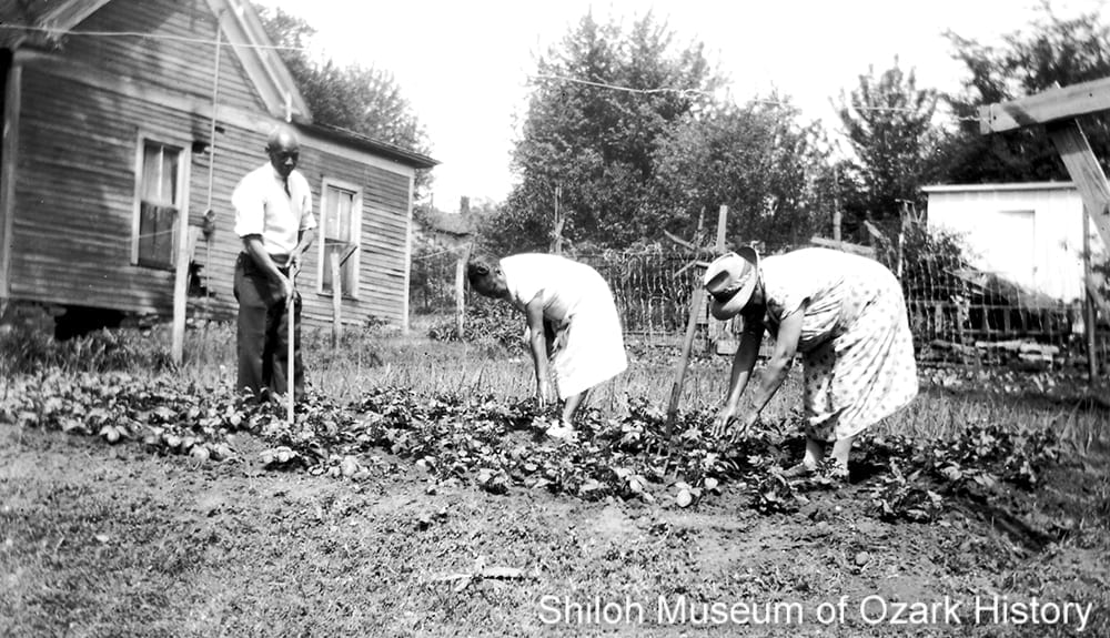 The Manuel family Victory Garden on East Center Street, Fayetteville, ArkansasMay 1943.