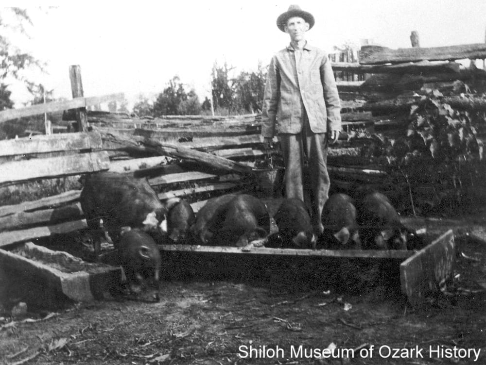 William Loddie Karnes slopping the hogs, West Fork (Washington County, Arkansas), early 1900s