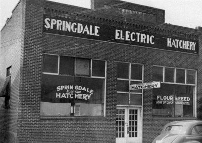 Springdale Electric Hatchery, 1930s.